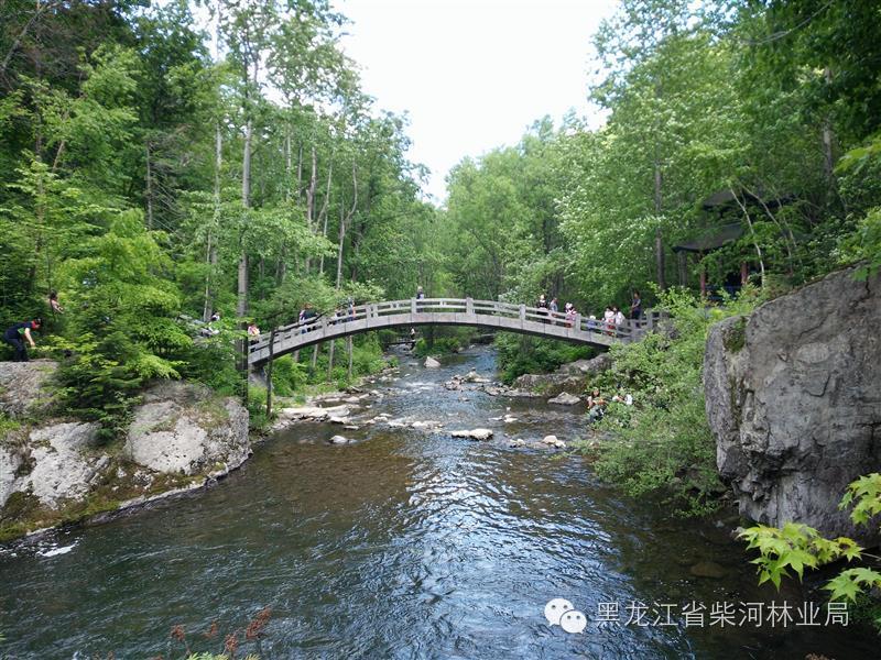端午节:威虎山景区迎来旅游小高峰
